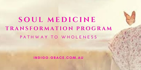 Info session - Soul Medicine Transformation Program - in person group tickets