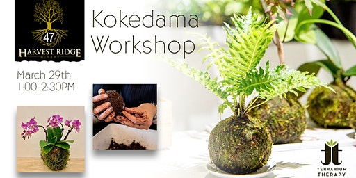 Orchid and Jade Kokedama Workshop at Harvest Ridge