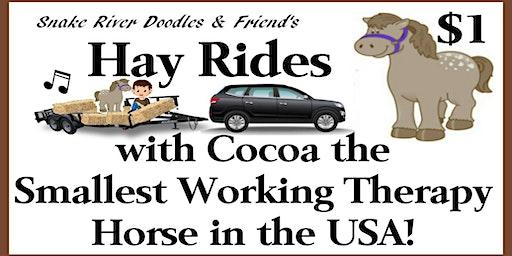 Leap into Life Hay Rides & Market