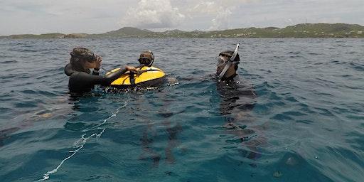 Freediver Course