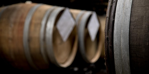 Barrel Aged Sensory (Stout Month Special) - Fort Collins Taproom