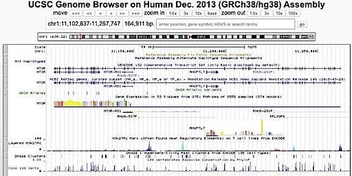 UCSC Genome Browser Workshop