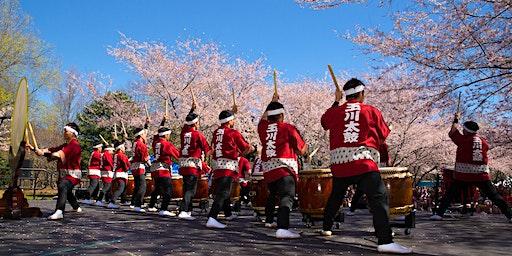 2020 Subaru Cherry Blossom Festival