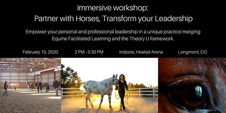 Immersive workshop: Partner with Horses, Transform your Leadership tickets