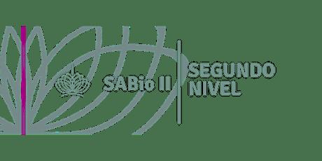 SABio Segundo Nivel en Rosario, 7 y 8 de Marzo entradas