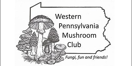 Sycamore Island Fungus Hunt tickets