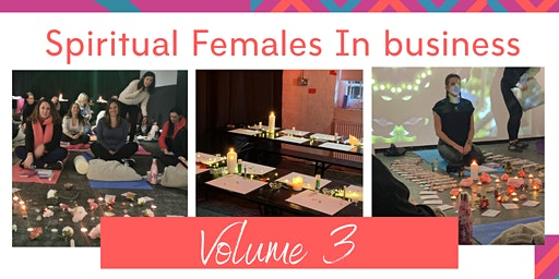 Spiritual Females In Business - Volume 3