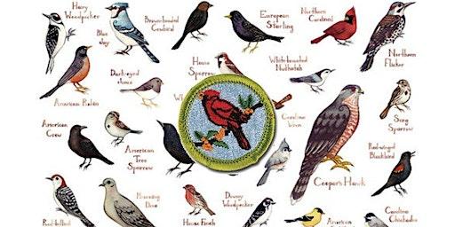 Boy Scout Bird Study Merit Badge