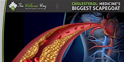 Cholesterol--Medicine's Biggest Scapegoat