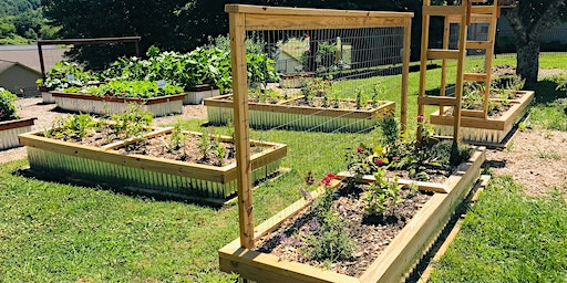 Clay County Raised Bed Basics