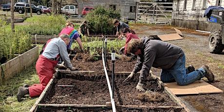 Native Plant Nursery - Volunteer Days tickets