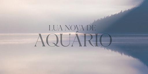 Lua Nova de Aquário | RJ