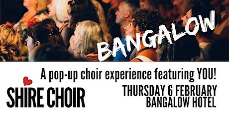Shire Choir Bangalow - February 2020 tickets