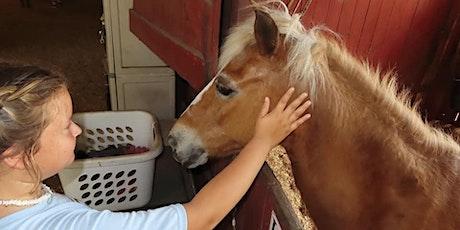 10th Annual Horse Jamboree tickets