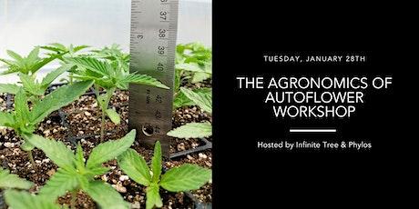 The Agronomics of Autoflower Workshop tickets