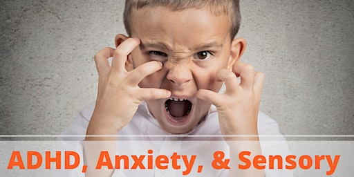 ADHD, Anxiety, & Sensory Processing Workshop: Addressing the Cause