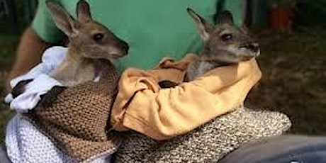 Wine, Women & Wool  - Knitting for Australian Wildlife tickets