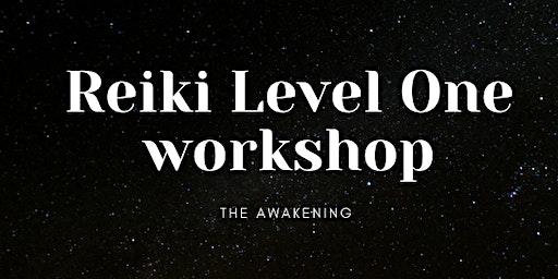 Reiki Level One The Awakening Workshop