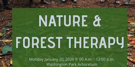 LO Seattle | Nature + Forest Therapy Walk tickets