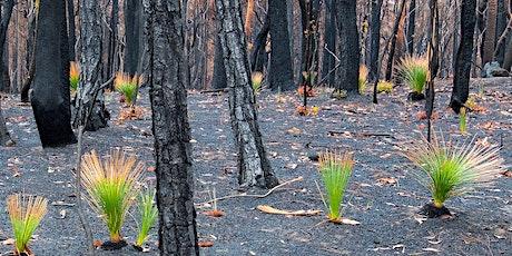Physics Fundraiser | Bushfire Appeal tickets