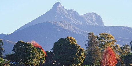 Sunrise hike to the top of Mt Warning tickets