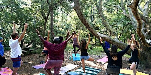 Plant Based Wellness & Herbal Healing Retreat