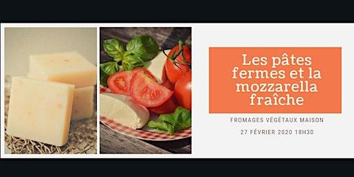 Fromages végétaux maison / les pâtes fermes et la mozzarella fraîche