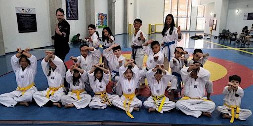 MONDAYS & THURSDAYS: Taekwondo (K4-G.12) - 4,500 baht