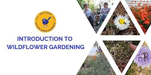 Introduction to Wildflower Gardening