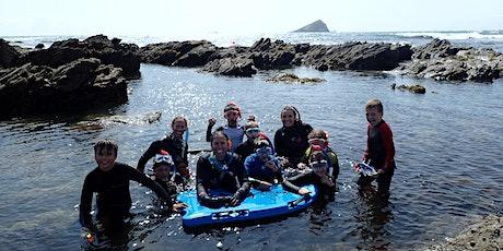 Last Snorkel Safari of the Season tickets