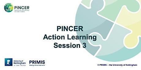 PINCER ALS 3 - Burton on Trent 10.03.20 - West Midlands AHSN  tickets
