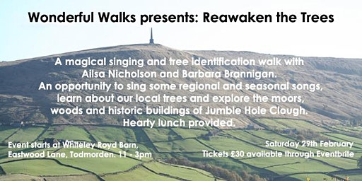 Wonderful Walks presents: Reawaken the Trees