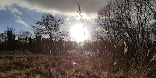 Thatcham Winter Bird Walk - Nature Discovery Centre