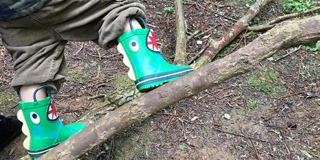 Forest Tots at Bubbenhall Wood (2-4 yrs) tickets
