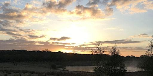 Dawn Chorus Walk at Bubbenhall Wood