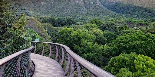All around Table Mountain