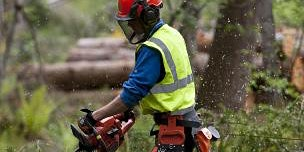 Chainsaw Maintenance, Cross-Cutting & Felling to 380mm