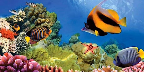 Coral Reef Ocean Science Family Painting with @BlaeberryRiverArt and Dr Clare Bird tickets