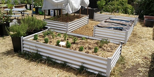 Wicking Bed Workshop / Working Bees