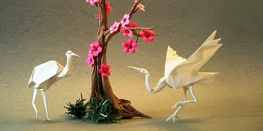 Learn the art of Origami and the way of Japanese Tea