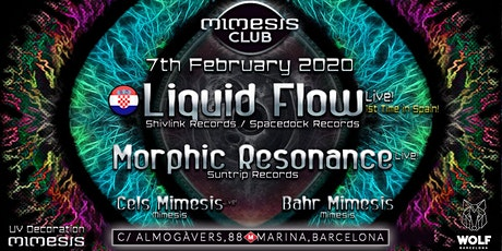 Mimesis CLUB - February w/ Liquid Flow & Morphic Resonance! entradas