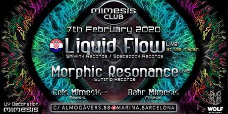 Mimesis CLUB - February w/ Liquid Flow & Morphic Resonance! tickets
