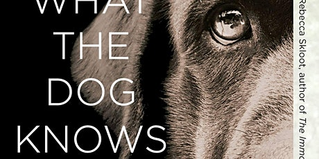End Animal Homelessness with Cat Warren | What the Dog Knows tickets
