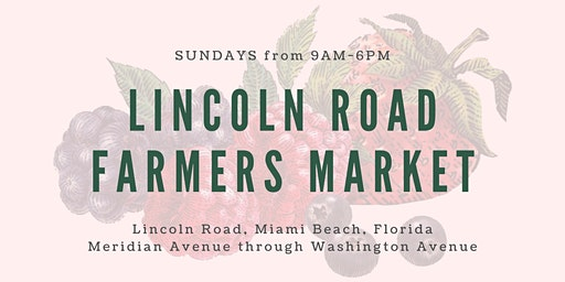 Lincoln Road Farmers Market (Every Sunday)