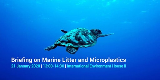 Briefing on Marine Litter and Microplastics