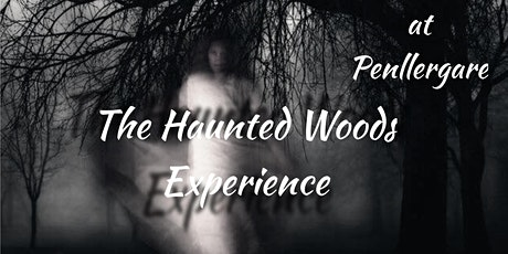 The Haunted Woods Experience - Swansea tickets
