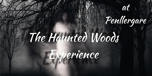 The Haunted Woods Experience - Swansea