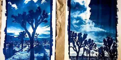 Make Sun Prints (Cyanotypes) in Joshua Tree