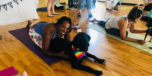 Adoptable Dog Yoga at Harley-Davidson of Indianapolis