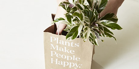 New Year, New Leaf Sale – Houseplants, Planters, and Potting Supplies! tickets